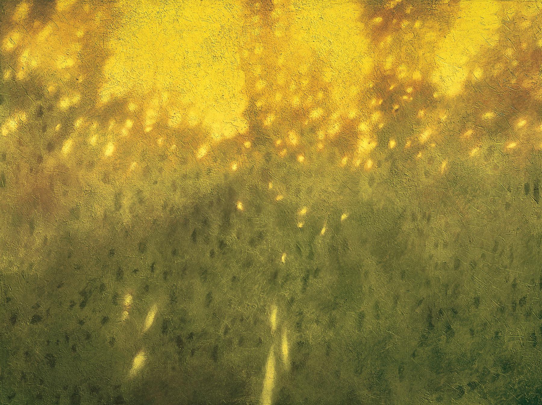 Bosco in giallo 2001 acrilico e olio su tela cm 150x200