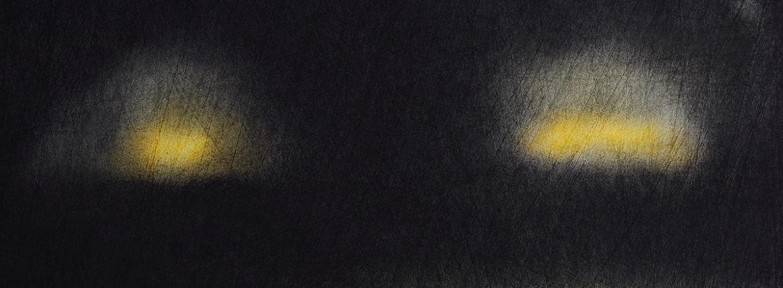 Appunti notturni, 2008, Pastello su cartoncino, 510 x 365 mm.